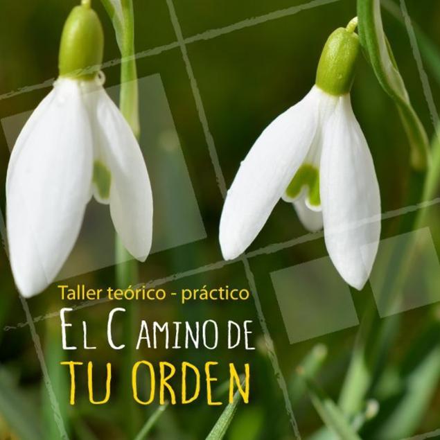 Imagen de EL CAMINO DE TU ORDEN