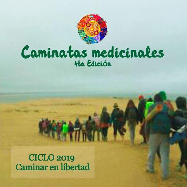 Imagen de Caminatas medicinales 4ta Edición. Ciclo 2019